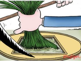 小白必看:币圈割韭菜模式揭秘,获利千万的盘圈暴利赚钱项目(防骗)