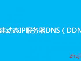 【自建DDNS域名】Dynu简单配置DDNS教程,搭建可获取服务器动态IP的免费域名