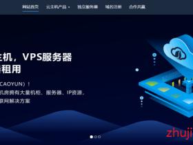 【建站服务器】野草云:最新5折促销,香港CN2+BGP/大带宽/不限流量,VPS低至19元/月,香港E3独服低至290元/月