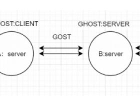 GOST隧道一键脚本使用教程,利用GOST搭建中转安全隧道