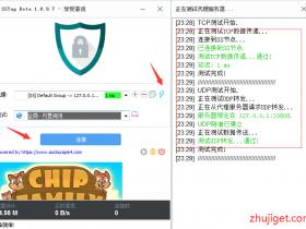 完整V2Ray配合(SSTAP/Telegram/SwitchyOmega )等工具使用教程,畅玩游戏/指定浏览器上网/各种扩展工具技巧