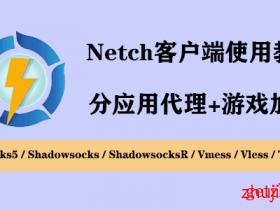 最新版Netch客户端 详细使用图文教程-Windows下的游戏加速工具